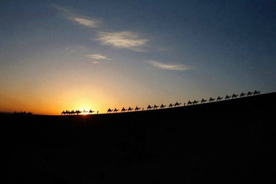 camel trekking morocco desert