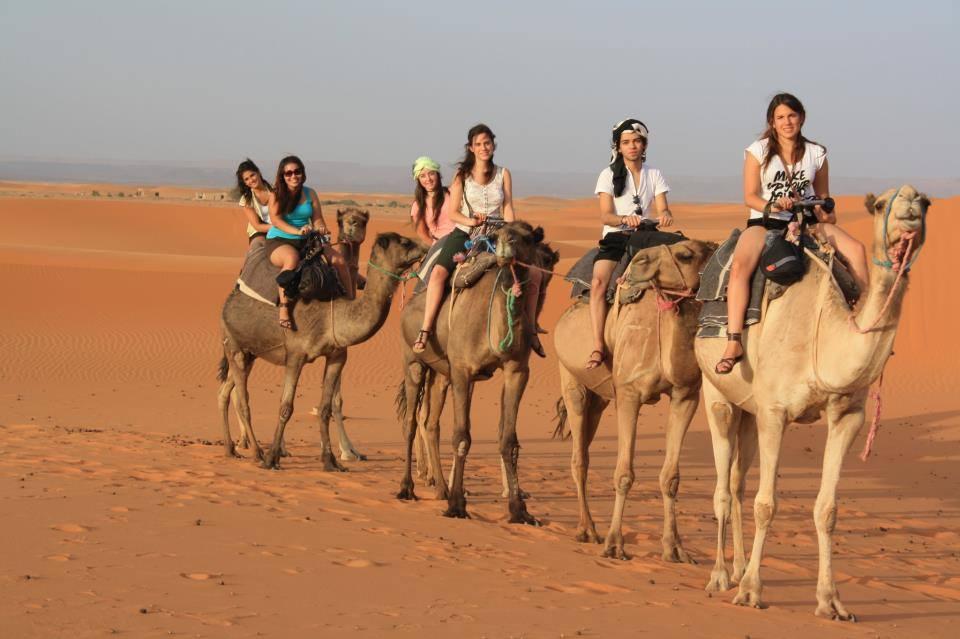 camel trekking sahara
