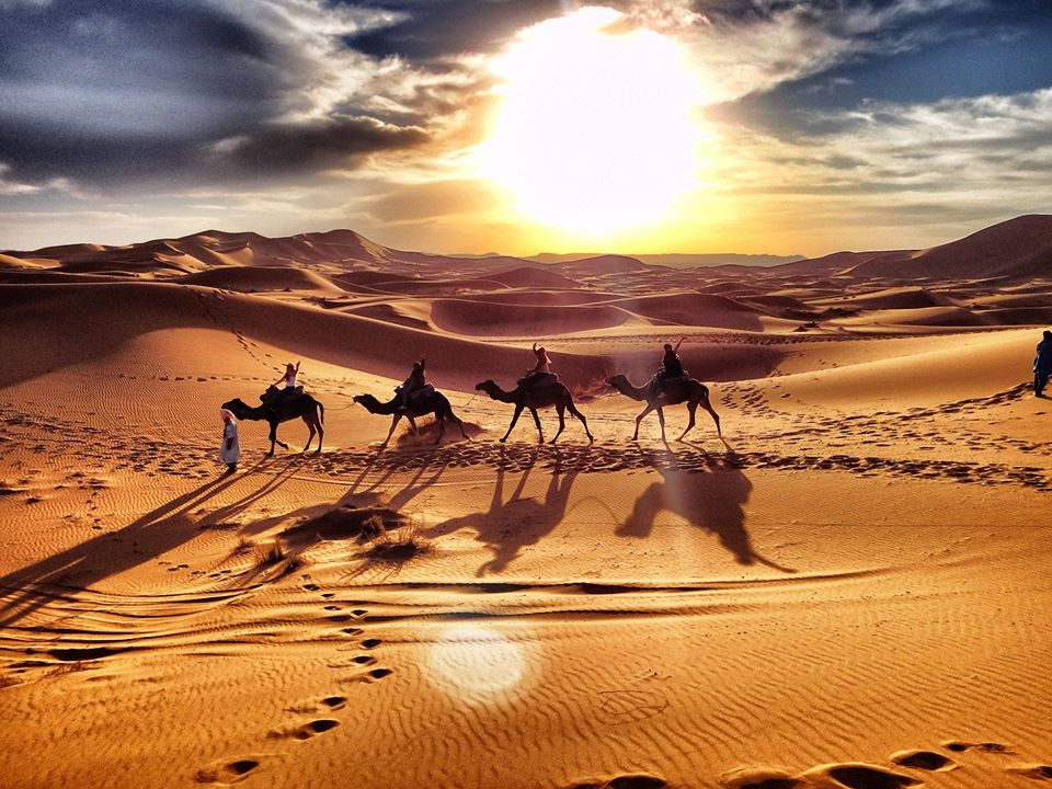 excursiones en camellos Marruecos